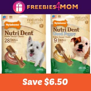 Save $6.50 on Nylabone Nutri Dent for your Dog