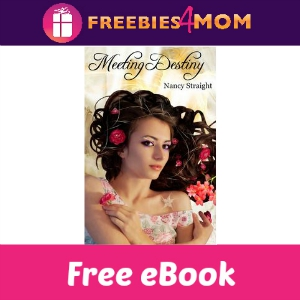 Free eBook: Meeting Destiny ($3.99 Value)