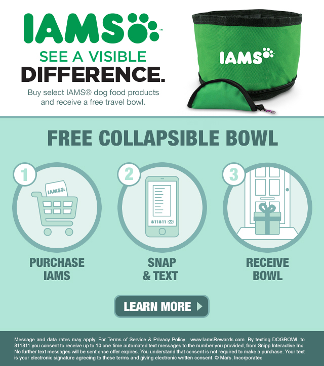 Is Iams Grain Free Good Food For Maltipoo