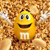 Peanut TN