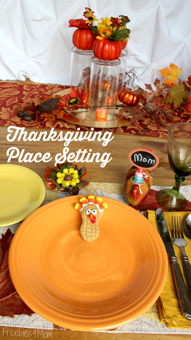 Thanksgiving Place Setting from Family Dollar