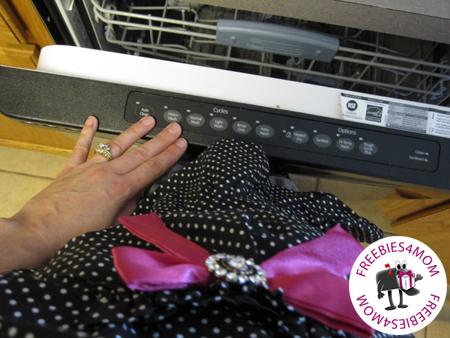 Dishwasher Closure