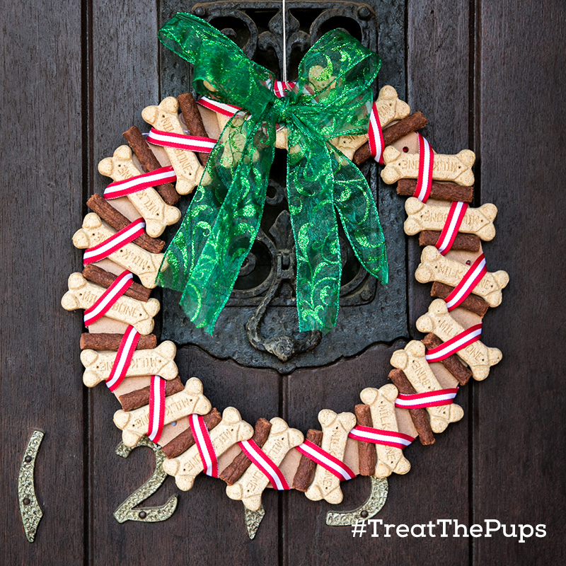 DIY Holiday Dog Gifts #TreatThePups