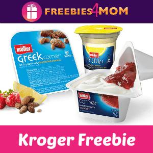 Free Muller Yogurt at Kroger
