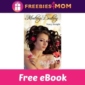 Free eBook: Meeting Destiny ($3.99 Value)