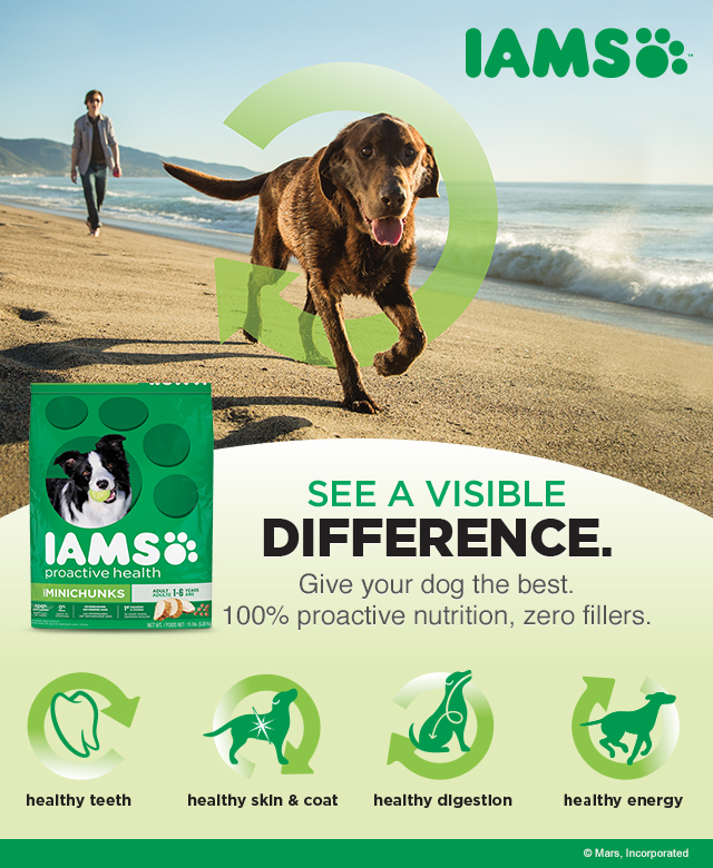 IAMS Visible Difference with dog food and dog treats at Walmart