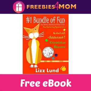 Free eBooks: Kitchen Addiction! & Christmas Bizarre