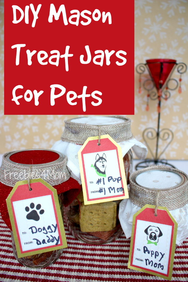 Purina Treat Coupons and DIY Mason Treat Jars for Pets