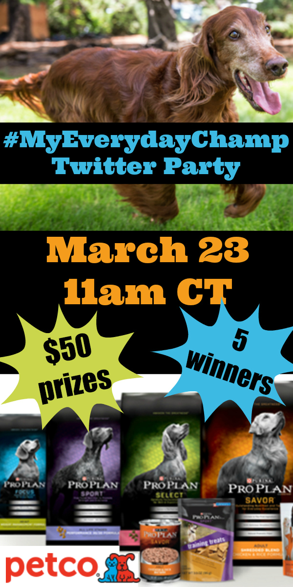 #MyEverydayChamp Twitter Party