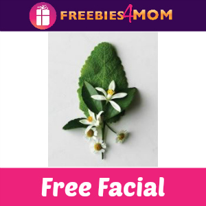 Free Facial at Aveda