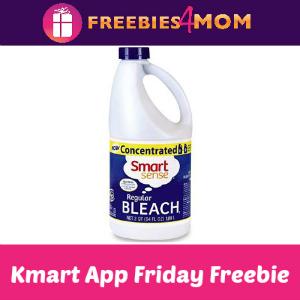 Free Bleach at Kmart