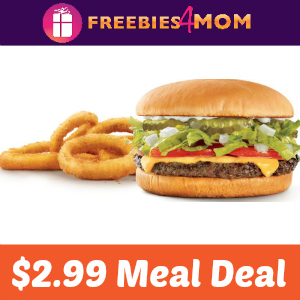 Sonic Cheeseburger & Onion Rings $2.99