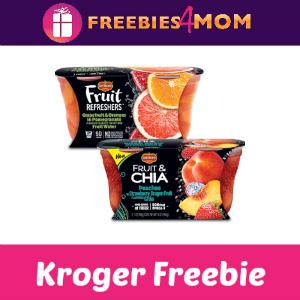 Free Del Monte Fruit Refresher at Kroger