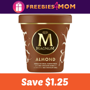 Coupon: Save $1.25 on Magnum Ice Cream