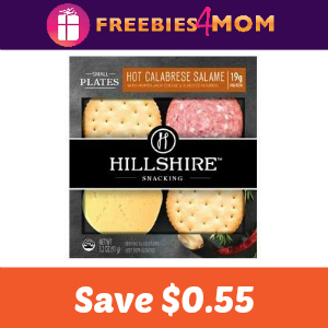 Save $0.55 On One Hillshire Snacking Product