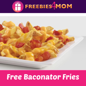 Free Wendy's Baconator Fries (w/any purchase)