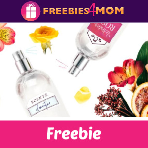 Free Children's DIY Perfume Activity
