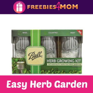 Easy Windowsill Herb Garden: Ball Herb Growing Kit