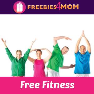 🧘♀️Free YMCA Health & Fitness Videos