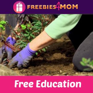 Free Vegetable Gardening Class