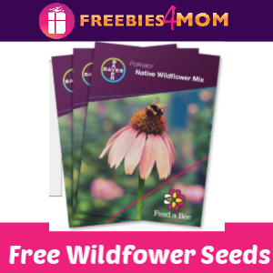 🌻Free Wildflower Seeds from Bayer