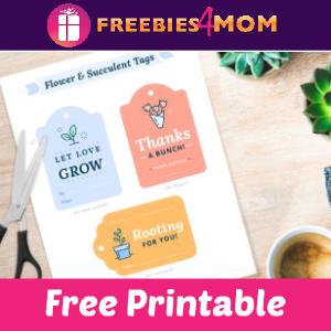 ❤️Free Printables to Spread Kindness & Positivity