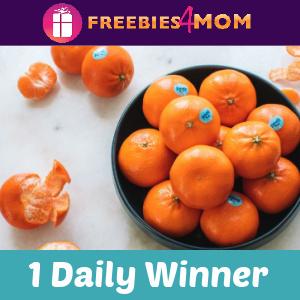 🍊Sweeps Peelz Citrus Eating Healthy Peelz Good