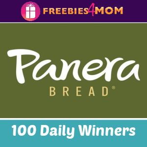 🍕Sweeps Panera Pepsi Pizza (Twitter or Instagram)