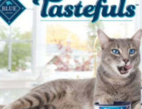 🐱Free Chatterbox Blue Buffalo Tastefuls Cat Food