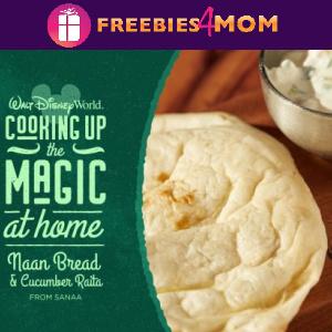 🏰Disney World Recipe: Naan Bread and Cucumber Raita